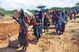Unos 10 millones de personas en riesgo de muerte debido a la grave escasez de alimentos.