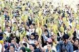 Centenares de jóvenes participan año con año en la celebración de la Jornada Juvenil de Ramos.