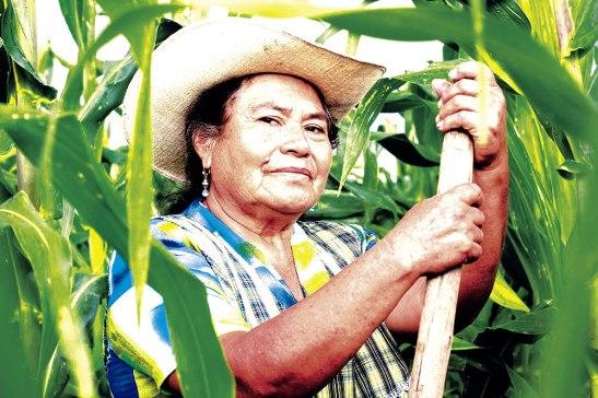 Los programas y proyectos que promueven el empoderamiento económico se orientan frecuentemente a permitir el acceso uso y control de las mujeres a los recursos productivos.