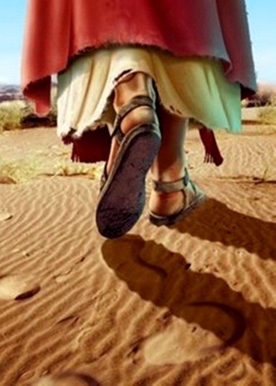 En el caminar de Jesús hacia Jerusalén, el mal fue tejiendo sus trampas.