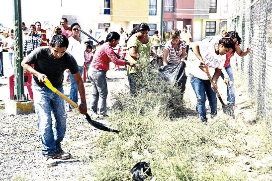 Las labores de limpieza no deben claudicar para impedir la proliferación de este zancudo.