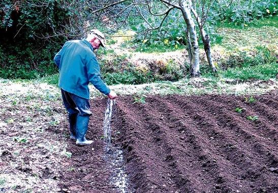Los campesinos prepararon sus tierras con la esperanza de tener buena producción.