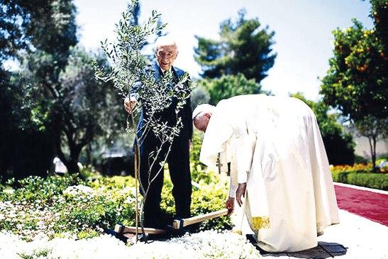 Por primera vez  se celebrará la Jornada Mundial de Oración por el cuidado de la Creación.