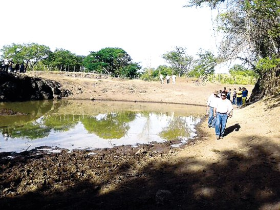 Agricultores y ganaderos sufren por falta de lluvias que se vive en algunos departamentos del país.